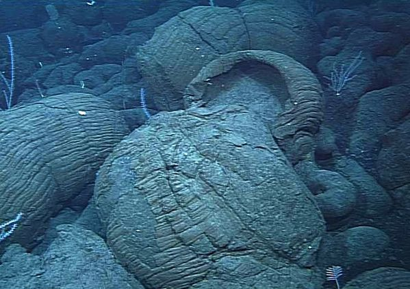 Puna ridge pillow lavas 2107 m deep - 2001 MBARI