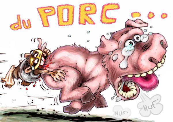 cdg 017 - porc