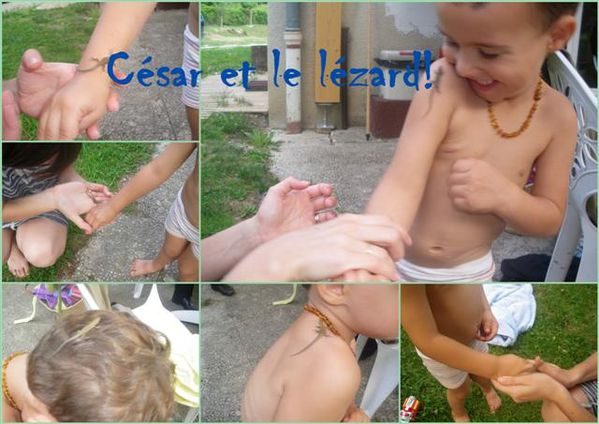 cesar et le lezard (Small) (2)