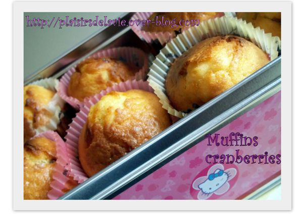 Muffins-cranberries-copie-1.jpg