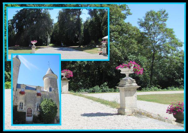 fontenay comte chateau