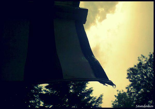 1-PHOTO-PICASA4345.jpg