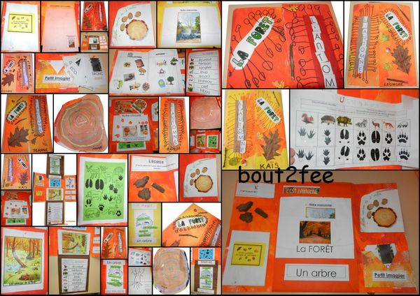 lapbook-automne-20114-copie-1.jpg