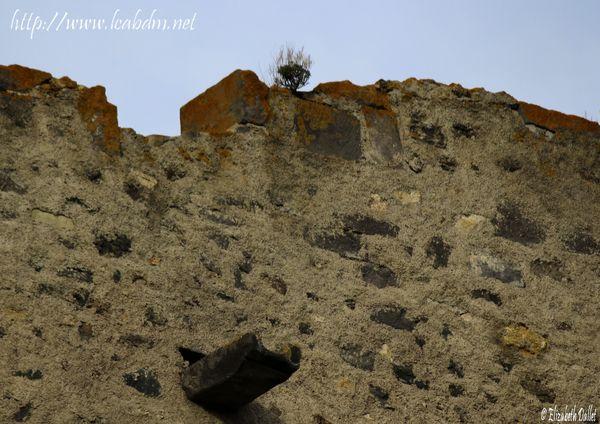 TN mur goutière 2