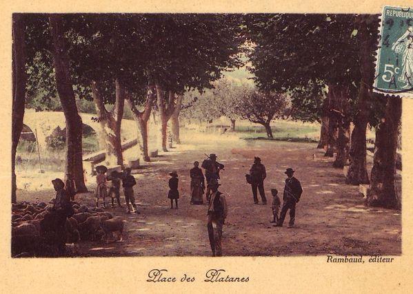 place_des_platanes_2.jpg