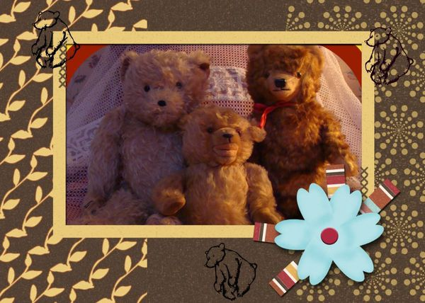 montage ours 2
