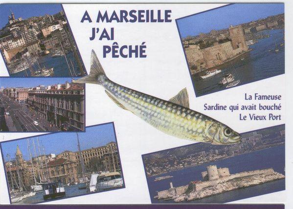 J 39 ai p ch sardine cigale et el phant le blog de cricket1513 - Sardine port de marseille ...