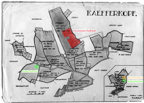 Plan-Kaefferkopf-1932.JPG