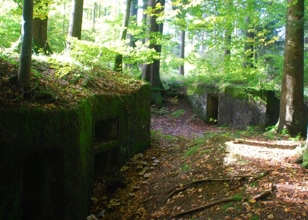A27 - bunkers Donon