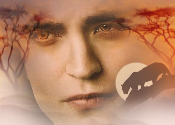 edward-culen-twilight-series-9545815-700-501