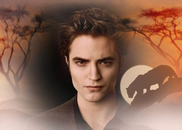 edward-culen-twilight-series-9545818-700-501