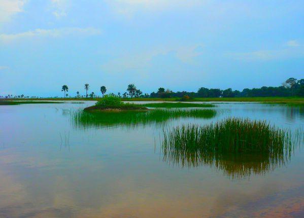 Bolong en Casamance