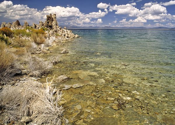 Lakeside_of_Mono_Lake---Michael-Gabler.jpg