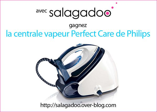 salagadoo.over-blog-jeu perfect-care-philips