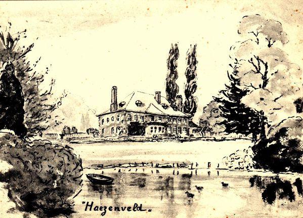 Hazenveld002