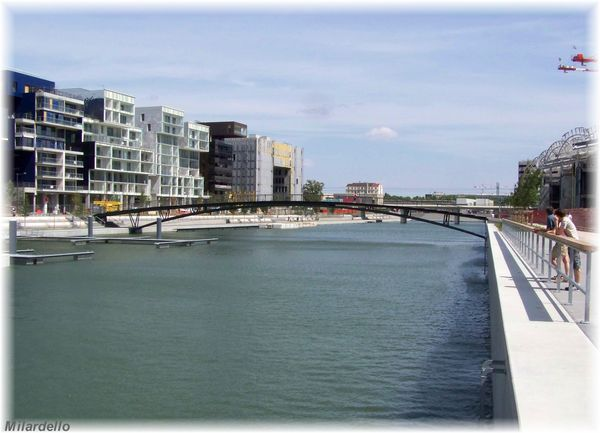 lyon-islands-confluence-2.jpg