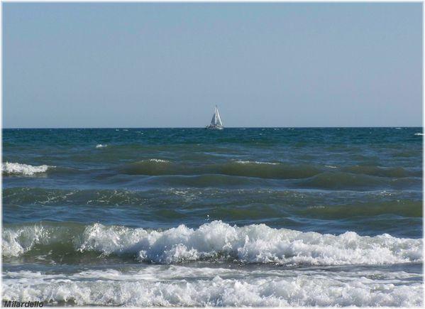 rm-pb-la-mer-vue-de-la-plage-de-l--espiguette-1.jpg
