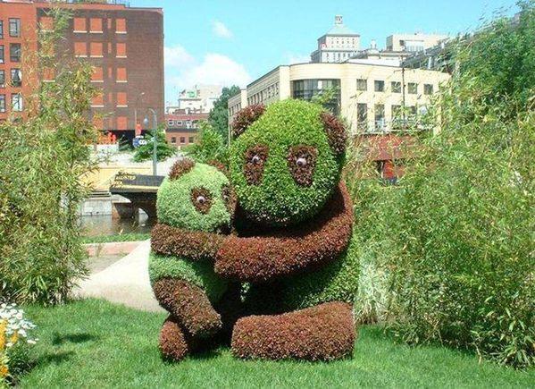 le-vegetal-en-scene2.JPG