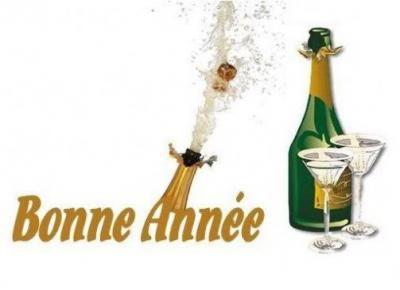 bonne-annee-73.jpg