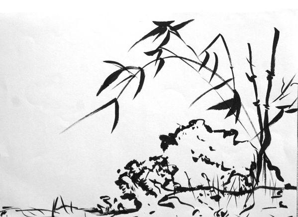 bambou-