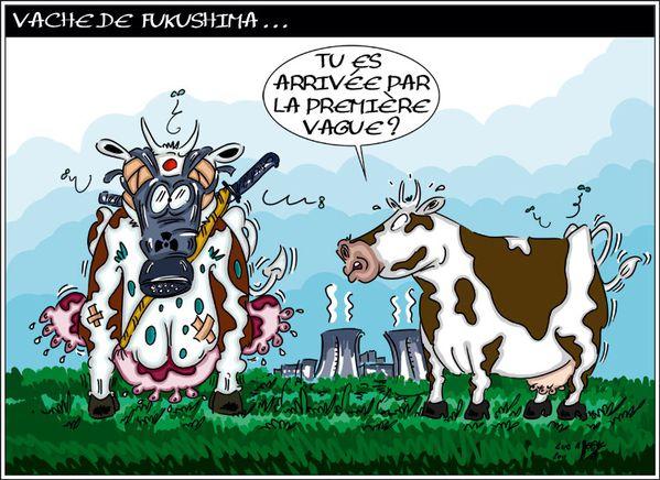 vache de fukushima