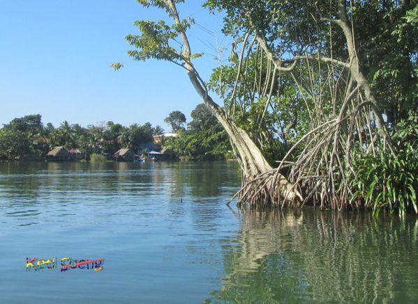 Río Dulce. Guatemala10