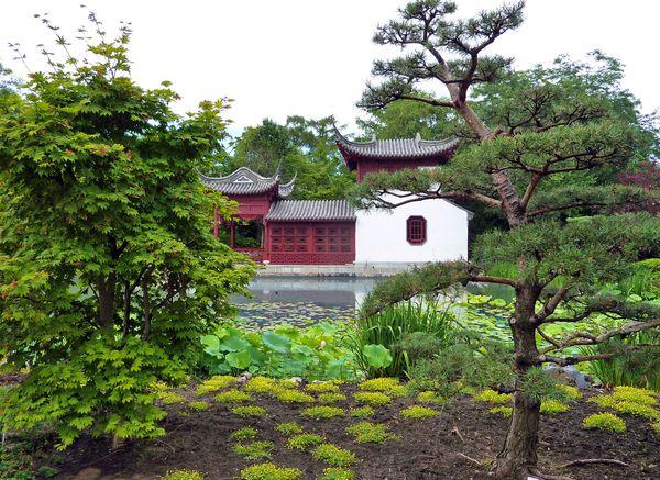 Montréal jardin botanique chinois 1