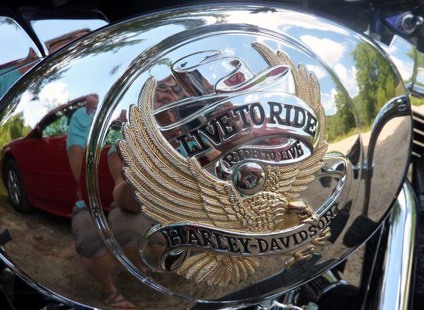 Parc Omega Harley 2