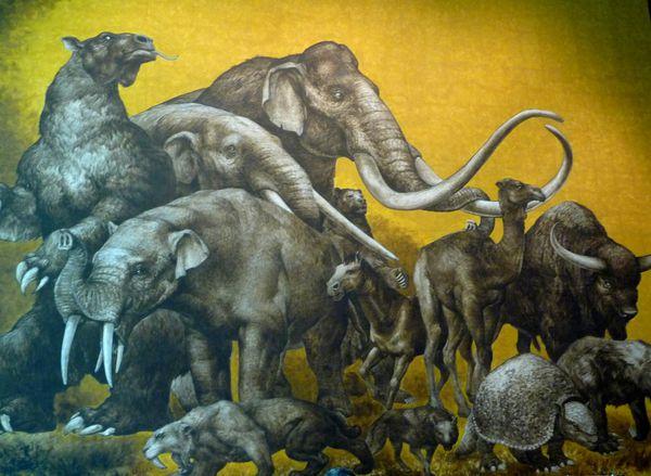 Mexico-Musee-fresque-prehistoire.jpg