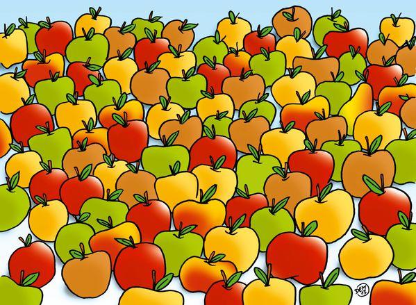 Pommes-en-stock.jpg