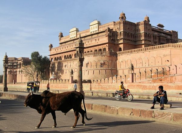 inde-ep2-bikaner-belle-surprise_26.jpg