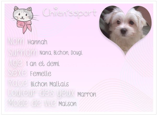 chienssport-Hannah.jpg