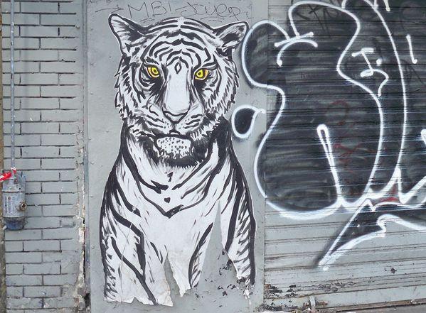 tigre - boulevard belleville paris