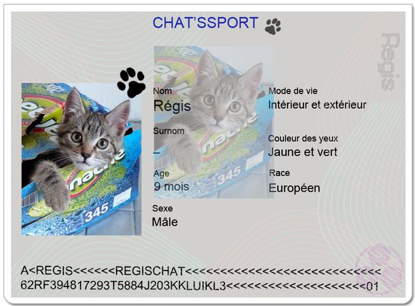 chatsport-Regis.JPG