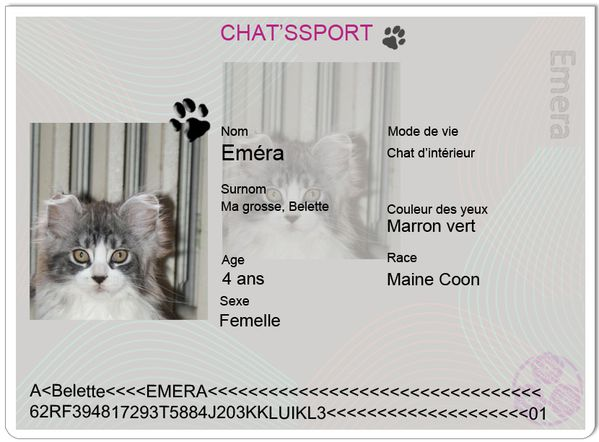 chatsport emera