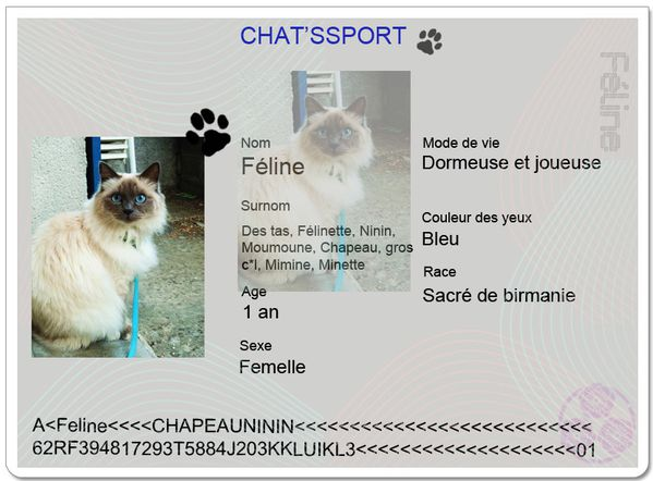 chatpssport-Jeromine.jpg