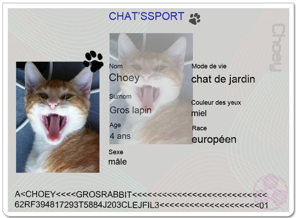 chatsport-Choey.JPG