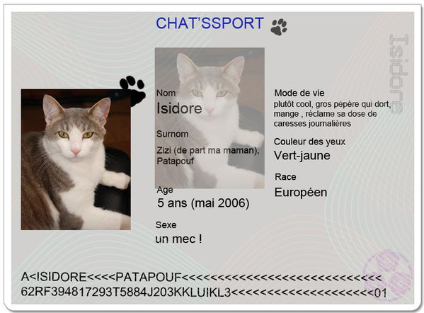 chatsport Isidore