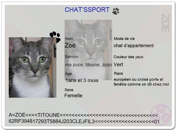 chatsport-zpe.JPG