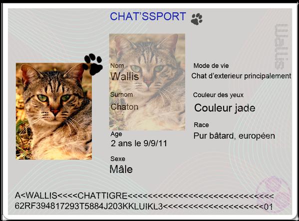 chatsportWallis.PNG