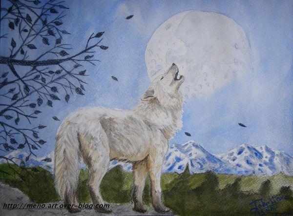 Loup Hurlant Au Coucher De Lune Meno Art
