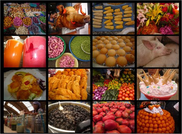 collage food ecuador