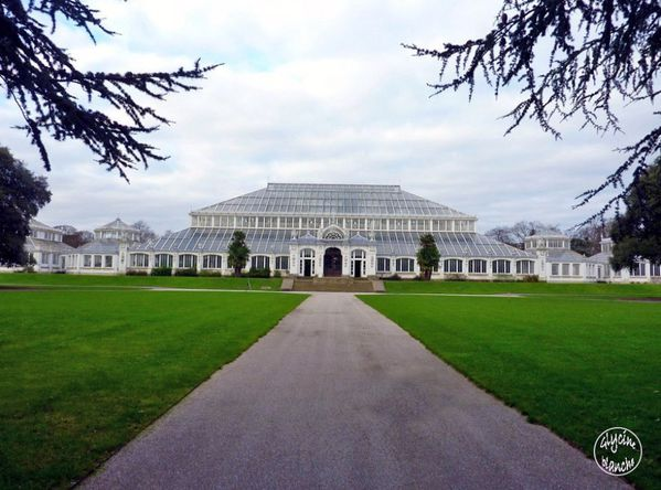 TEMPERATE-HOUSE-KEW-GARDENS-1--1600x1200-.jpg