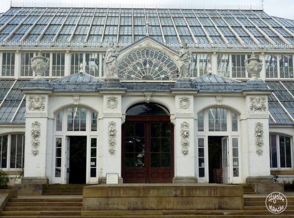 TEMPERATE-HOUSE-KEW-GARDENS-2--1600x1200-.jpg