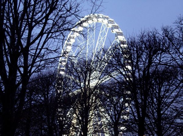 chocoshoot-illuminations-10.jpg