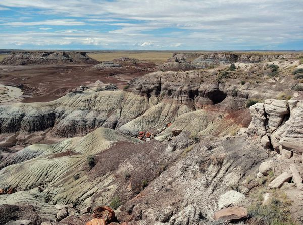Petrified Forest Blue Mesa overlook 1 (2)