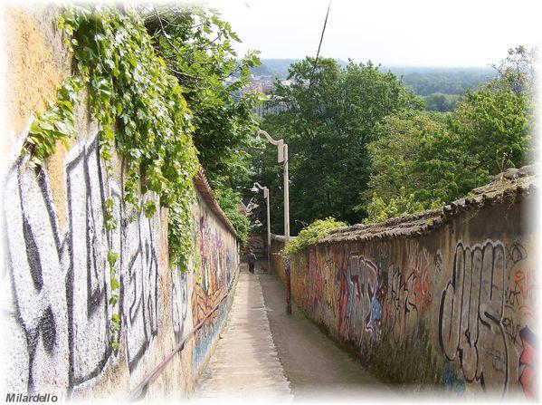 230-n-rm-pb-croix-rousse-passage-et-marches-escalier-joseph.jpg