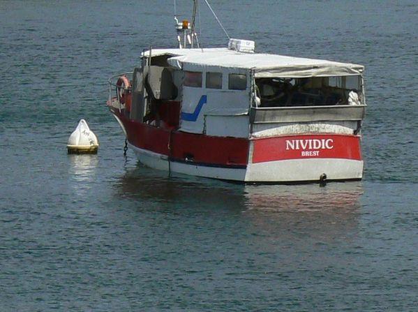 BR Nividic