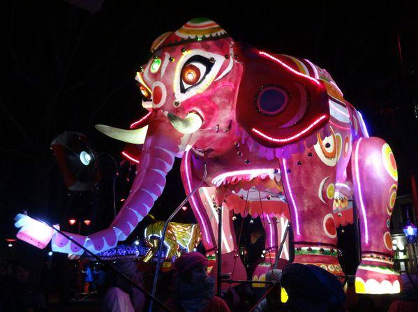Fête des Lumières 2012 quais de Saône animaux 4