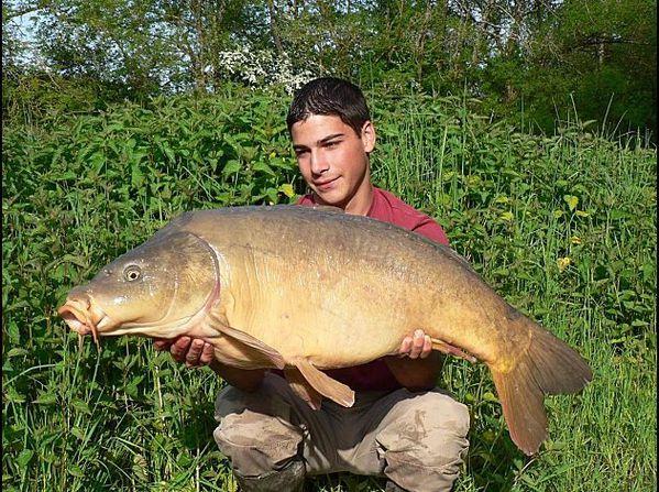 carpe-15-8-kg